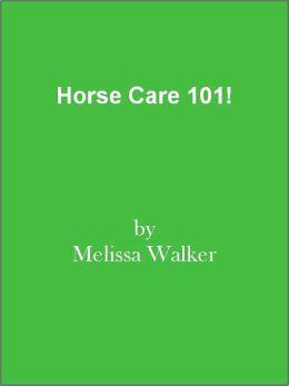 Horse Care 101!