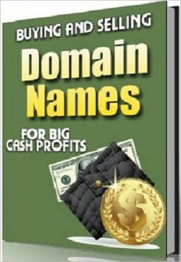 Money Making Opportunity - Buying & Selling Domain Names for Big Cash Profits