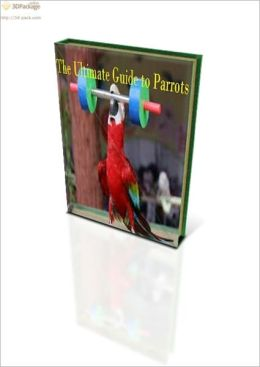 The Ultimate Guide To Parrots