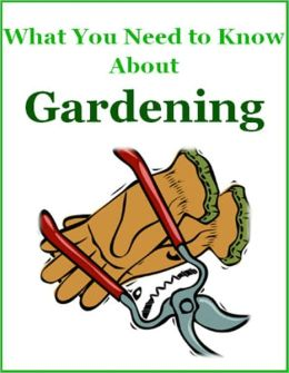 What You Need to Know About Gardening