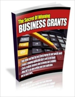 A Valuable Resource - The Secrets Of Winning Business Grants