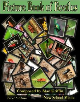 Picture Book of Beetles