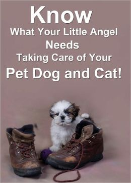 Know What Your Little Angel Needs: Taking Care of Your Pet Dog and Cat
