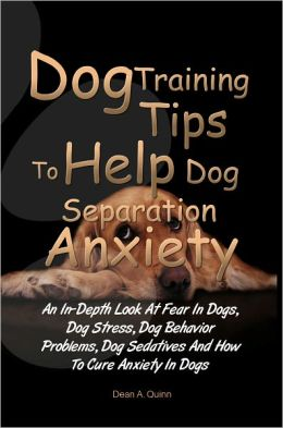 Dog Training Tips To Help Dog Separation Anxiety: An In-Depth Look At Fear In Dogs, Dog Stress, Dog Behavior Problems, Dog Sedatives And How To Cure Anxiety In Dogs