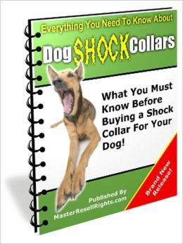 Dog Shock Collars - What You Must Know Before Buying a Shock Collar for Your Loving Dogs!