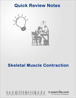 Quick Review: Skeletal Muscle Contraction