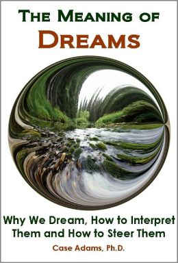 importance of dreams in the novel Dream moods is the only free online source you need to discover the meanings to your dreams  importance of dreams babies  novel to see or read a novel in.