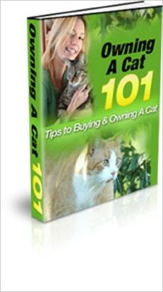 Owning A Cat: Tips to Buying and Owning a Cat