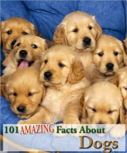 101 Amazing Facts About Dogs!