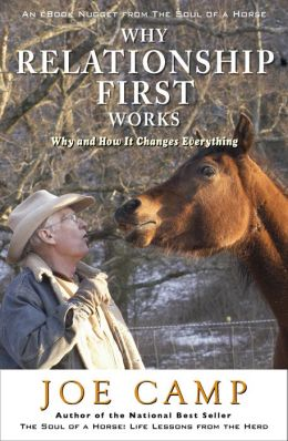 WHY RELATIONSHIP FIRST WORKS: Why and How It Changes Everything Another eBook Nugget from The Soul of a Horse