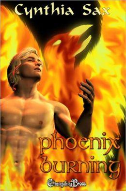 Unicorn Prince: Phoenix Burning