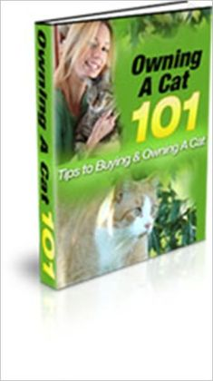 Owning A Cat 101 - Tips To Buying & Owning A Cat