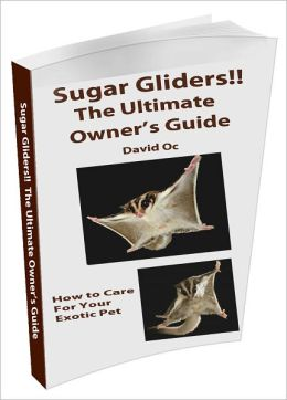 Sugar Gliders! The Ultimate Owner's Guide