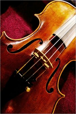 THE BASICS OF VIOLINS: ANTIQUE, ELECTRIC, AND USED