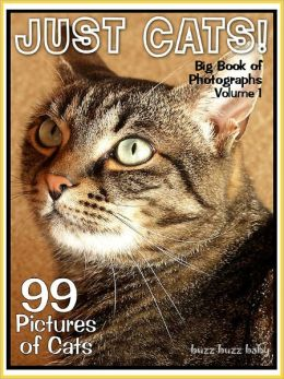 99 Pictures: Just Cat Photos! Big Book of Feline Photographs, Vol. 1