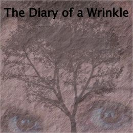 The Diary of a Wrinkle