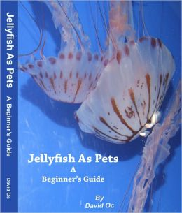 Jellyfish As Pets A Beginner's Guide