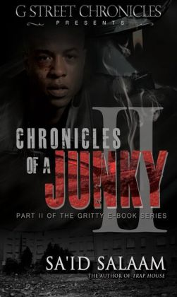 Chronicles of a Junky II (Short Story Mini Series)
