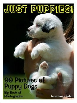 99 Pictures: Just Puppies Photos! Big Book of Puppy Dog Photographs Vol. 1