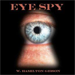 Eye Spy (Illustrated)