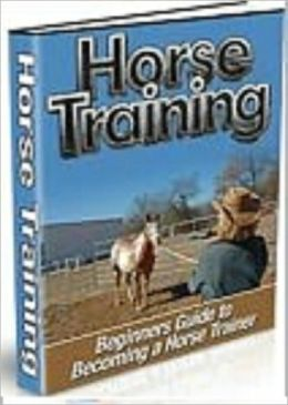 Horse Training: Beginner's Guide To Becoming A Horse Trainer