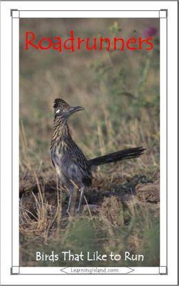 Roadrunners: Birds That Like to Run
