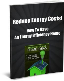 Reduce Energy Costs! How To Have an Energy Efficiency Home