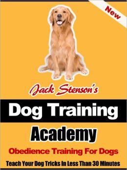 Dog Training Academy: Obedience Training For Dogs