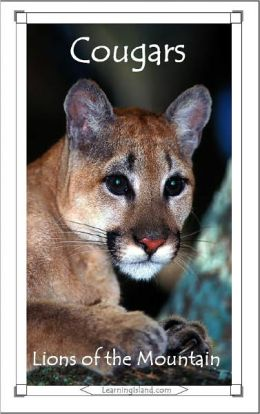 Cougars: Lions of the Mountains
