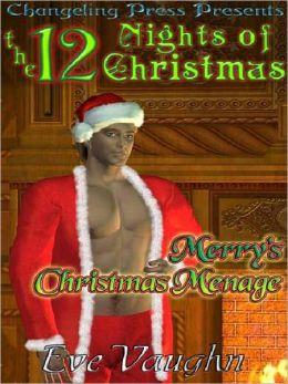 Merry's Christmas Menage
