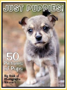 50 Pictures: Just Puppies! Big Book of Puppy Dog Photographs, Vol. 1