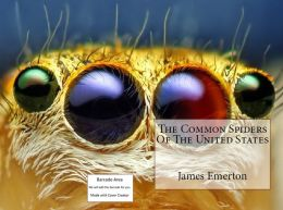 The Common Spiders of the United States(Annotated) ( pretty, fantastic, excellent, gorgeous, superb, bully )