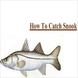 Fishing - Knowledge and Know How to Catch Snook