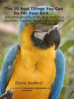 The 10 Best Things You Can Do For Your Bird