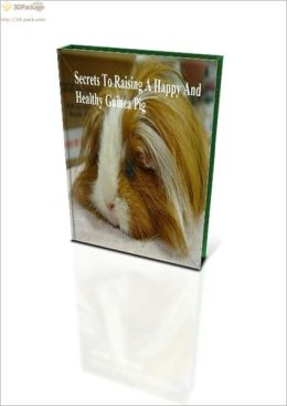 Secrets To Raising A Happy And Healthy Guinea Pig