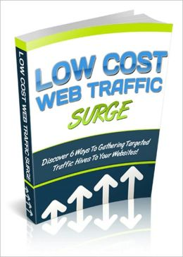 Essential Techniques - Low Cost Web Traffic Surge - Discover 6 Ways To Gathering Targeted Traffic Hives To Your Websites!