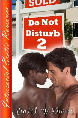 Do Not Disturb 2 (Interracial Erotica)