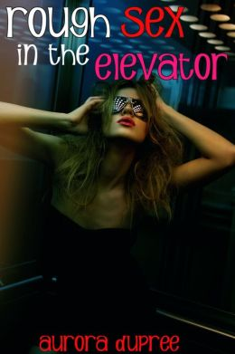 Rough Sex in the Elevator