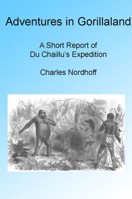 Adventures In Gorilla Land Illustrated