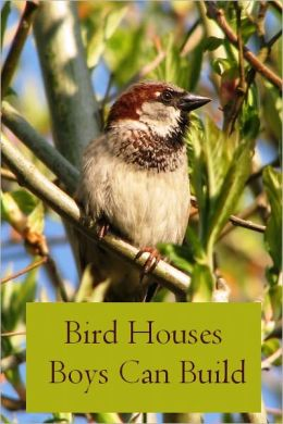 Bird Houses Boys Can Build (Illustrated)