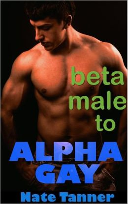 Beta Male to Alpha Gay