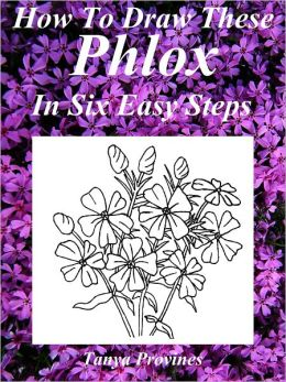 How To Draw These Phlox In Six Easy Steps