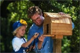 Bird House Building For Beginners