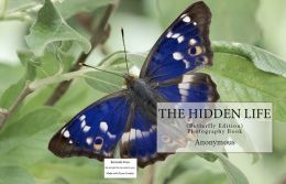 The Hidden Life (Butterfly Edition) ( outsize, indigested, loose limbs, unsymmetrical, Fantastic )