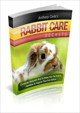 Rabbit Care Secrets: Secrets You Should Know Before Adopting A Rabbit! AAA+++