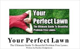 Creating Your Perfect Lawn