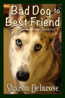 Bad Dog to Best Friend book