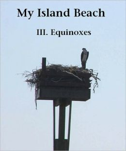 My Island Beach: III. Equinoxes