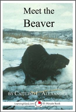 Meet the Beaver: A 15-Minute book for Early Readers