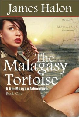 The Malagasy Tortoise